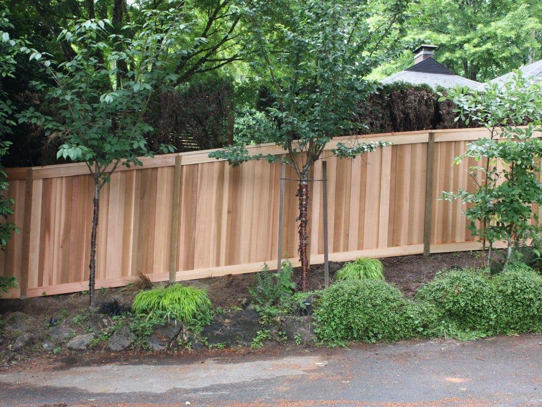 clear cedar fence
